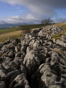 Click on this to see the details. Windswept limestone pavement captured by Andy Luck on Pentax 645D