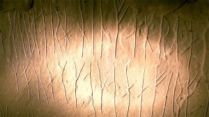 Runic writing on Orkney, by Andy Luck