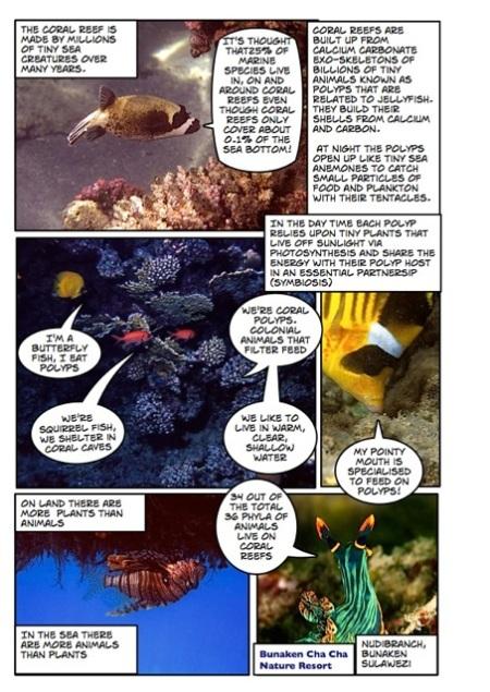 Life's a beach marine comic Page_2