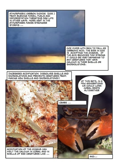 Life's a beach marine comic Page_4