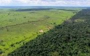 Image of forest and farmland from Amazon Farming, a short documentary film produced by Andy Luck in the Wild Wonders series copyright BBC Worldwide 2012