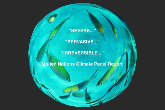 Image showing fish and stark messages from the UN Report on Climate Change