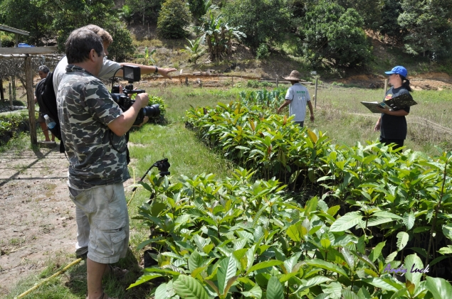 Andy Luck filming UNDP reforestation project for biodiversity in Sabah, Malaysia