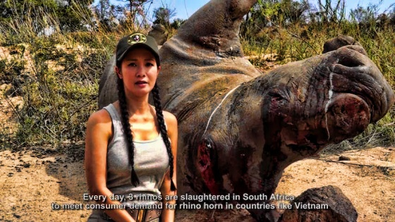 Diva Hong speaking out about the massacre of South African Black Rhinos
