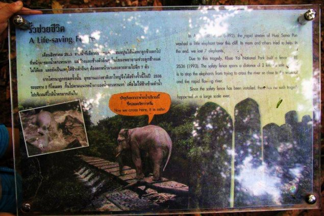 Information board about safety measures fo r elephants implemented at Khao YaiNational Park. Hugh Paxton Photo and copyright.
