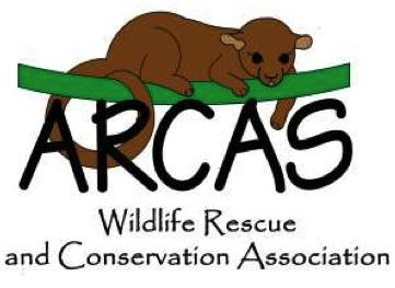 ARCAS logo