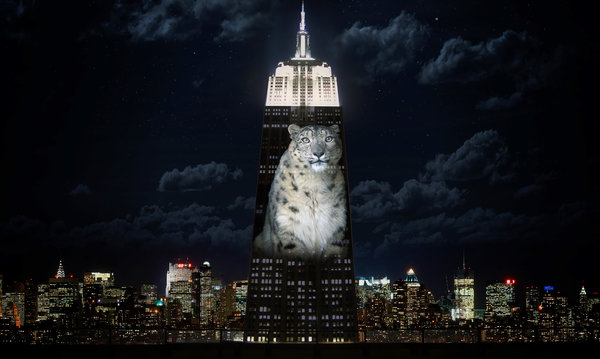 There's no denying New York does things in style! Snow Leopard on the Empire State Building celebrating the new UN Resolution.