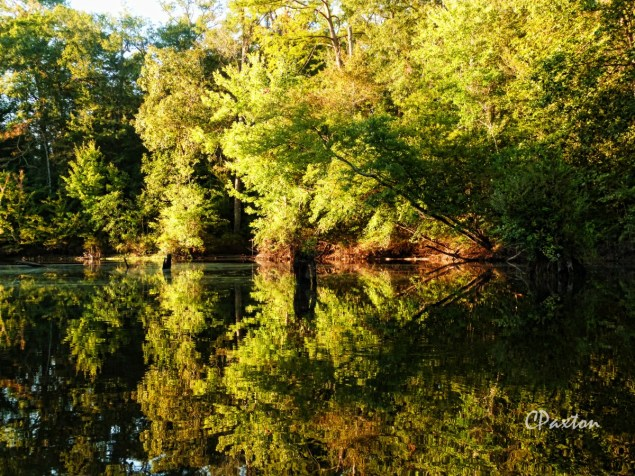 Lovely reflections south of Simmon's Hole. C.Paxton photo and copyright.
