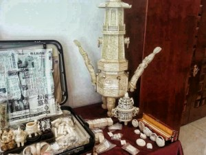 Confiscated ivory objects on display in Beijing, China. Traffic photo and copyright.