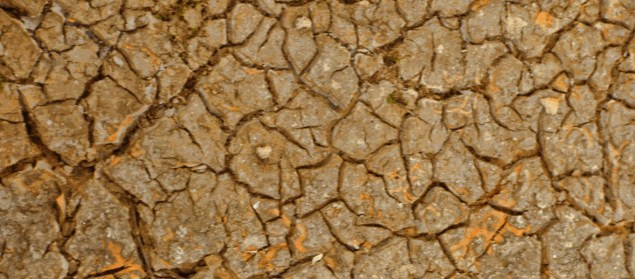 cracked earth from drought