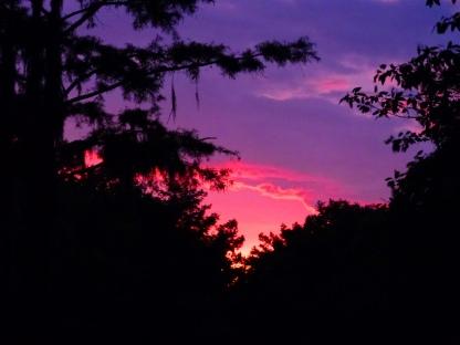 Cheniere Lake at dusk