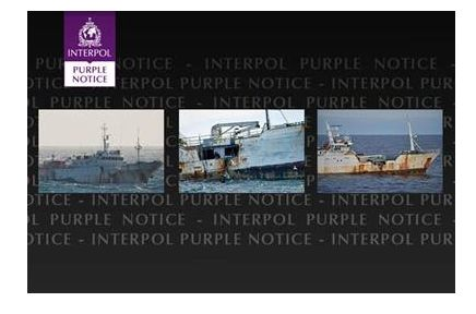purplenotice