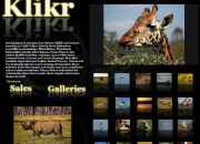 Endangered and beautiful, Kenya's Rift Valley Lakes wildlife and scenery in new Klikr gallery.