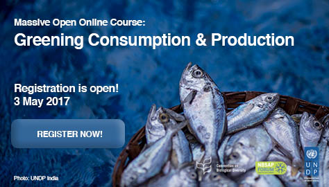 Click here to access the registration page for UNDP Greening Consumption and Production Massive Open Online Course
