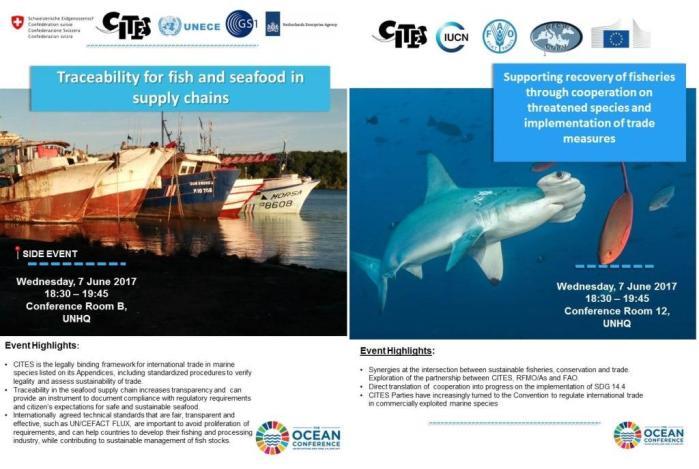 CITES events publicity material.