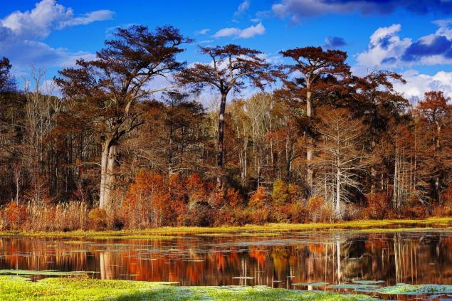 Rainey Lake in late Novemeber. C.Paxton image and copyright