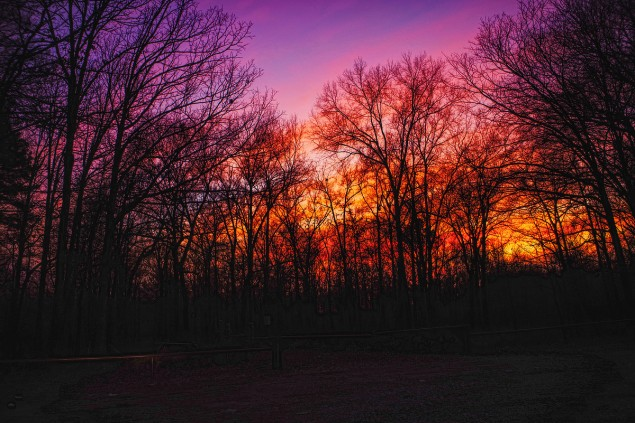 Blazing sunset at D'Arbonne National Wildlife Refuge. C.Paxton image and copyright.