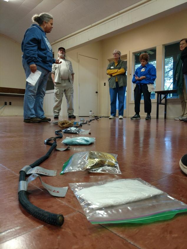 Kimmie attended Ranger Nova Clarke's course on Environmental ethics amongst others.