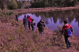 Louisiana Master Naturalists Bioblitz at Camp Hardtner during Louisiana Master Naturalists Rendezvous 2018