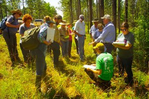 Dr. Allen's Plant Identification workshop in Kisatchie National forest was entertaining and informative. C. Paxton image and copyright.