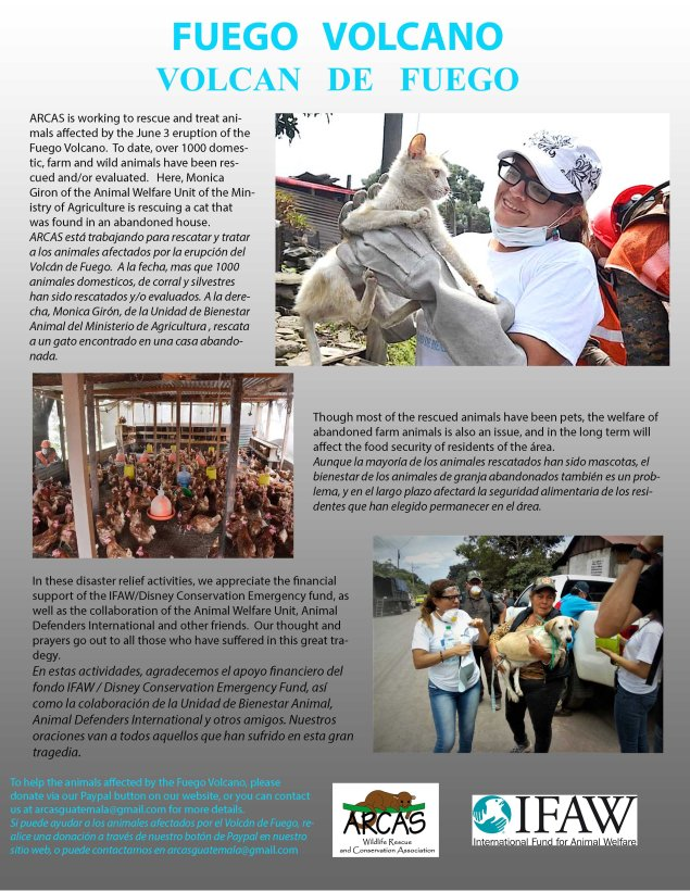 Poster about ARCAS helping in aftermath of deadly Fuego volcanic eruption. Click on the poster above to access the official ARCAS webpage.