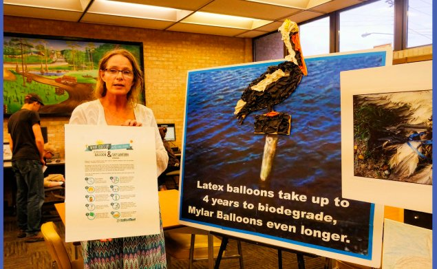 Head Librarian Stephanie Antley-Hermann standing beside a Pelican crafted from party balloons next to an image of a bird killed by a entanglement. Balloon releases equate to mass litering. It can take up to 4 years for a latex balloon to break down, more those made of mylar. Cattle have been known to choke on paper balloons. The ones with candles have been described as random incendiary devices!