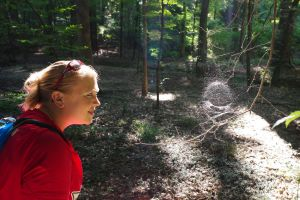 A student naturalist examining a complex spider's web in West Monroe's Kiroli Park. It would be tough work for a wasp to get to the spider.