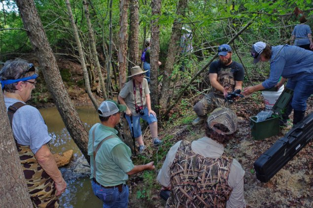 Dr. Bill Patterson with members of Louisiana Master Naturalists Northeast studying Redwine creek. C.Paxton photo, copyright LMNE.