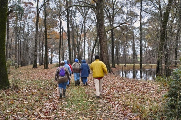Members of Louisiana Master Naturalists Northeast hiking at the Poverty Point World Heritage Site.