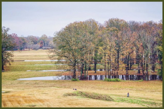 The unique ridge earthworks of Poverty Point near Epps, Louisiana show up well with pooled rainwater in December. Viewed from summit of Mound A. Taken on Pentax K-1. C. Paxton image and copyright.