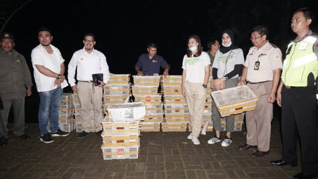 Seized! FLIGHT Staff and authorities with part of the intercepted shipments of over 8,ooo birds confiscated within a single week. FLIGHT image and copyright.