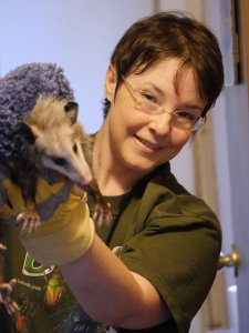 Kimmie extricating the Virginia Possum. C. Paxton image and copyright.