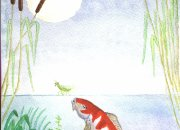 My watercolour painting of a koi carp contemplating an insect,
