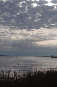 Reed-fringed Lake Pontchartrain with its famous 26 mile--long road bridge.