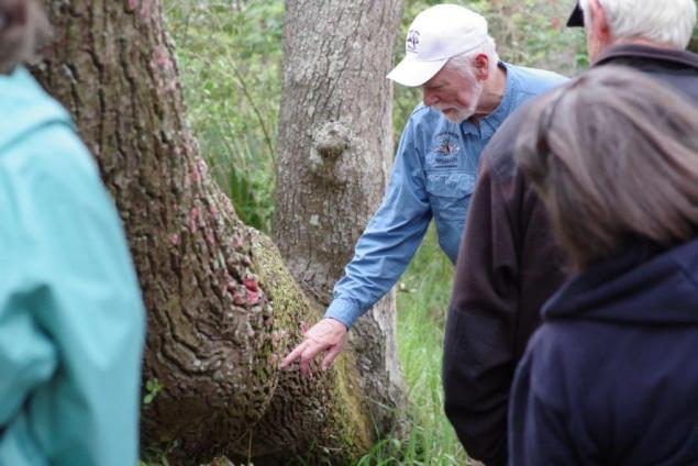 Dr. Bob Thomas pointing out a Christmas Tree lichen.