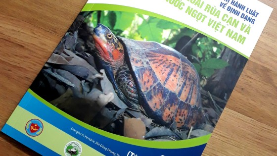 ENV Produce Chelonian Guide To Assist Law Enforcement