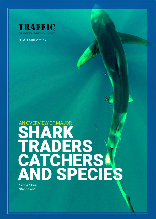 Sharks, traders, catchers andspecies_TRAFFIC report cover