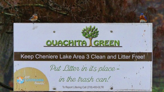 One of Ouachita Green's signs with two Bluebirds perched upon it., part of the ongoing litter abatement campaign.
