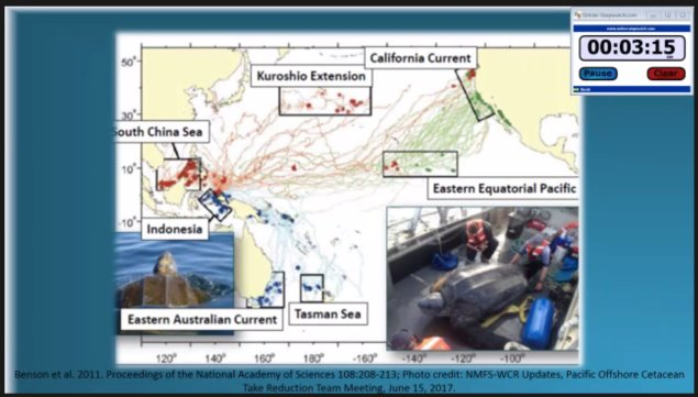 Still grab showing extent of Leatherback Sea turtle travels across the Pacific Ocean from the public presentation made by Annalisa Batanides Tuel at the CFG ZOOM meeting